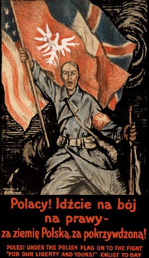 Allieret hverveplakat tilsigtet Polakker