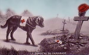 Sørgende Røde Kors hund ved søgehjælpers grav