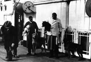 Nogle hunde fra Titanic fotograferet før afsejlingen