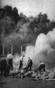 Døde i Auschwitz brændes under åben himmel