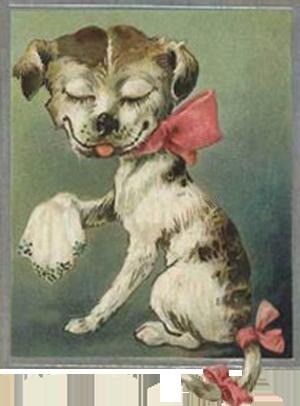 En sød hund fra 1905