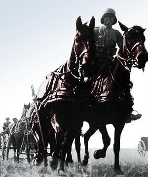 Heste trækker for den tyske hær